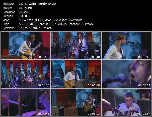 Screenshot of Music Video Paul Weller - Sunflower