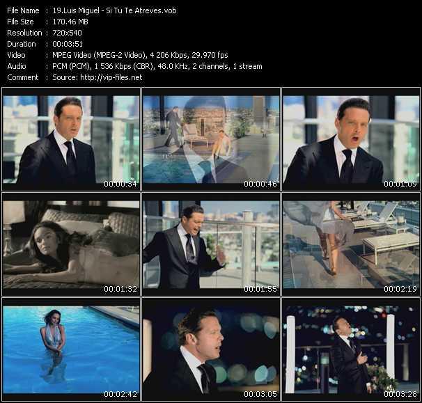 Luis Miguel Si Tu Te Atreves Descargar Hq Vob Vídeo Musical De Luis Miguel