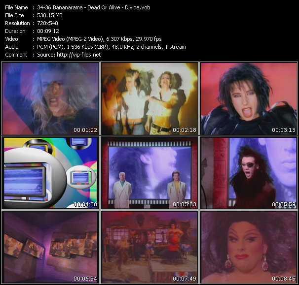 Screenshot of Music Video Bananarama - Dead Or Alive - Divine - Venus - Lover Come Back To Me - Walk Like A Man
