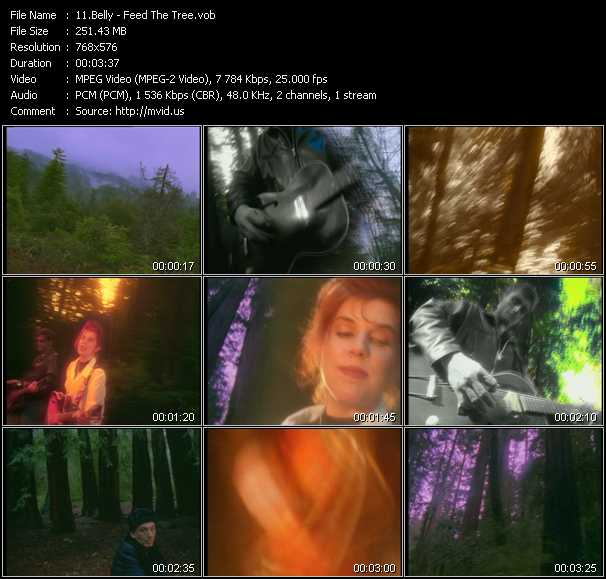 Screenshot of Music Video Belly - Feed The Tree